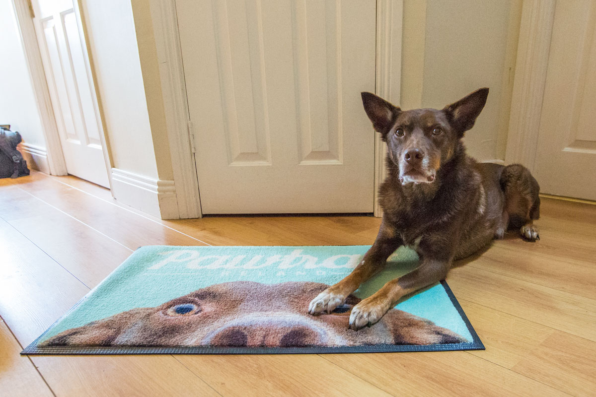 Underfoot Designs personalised pet mat sample